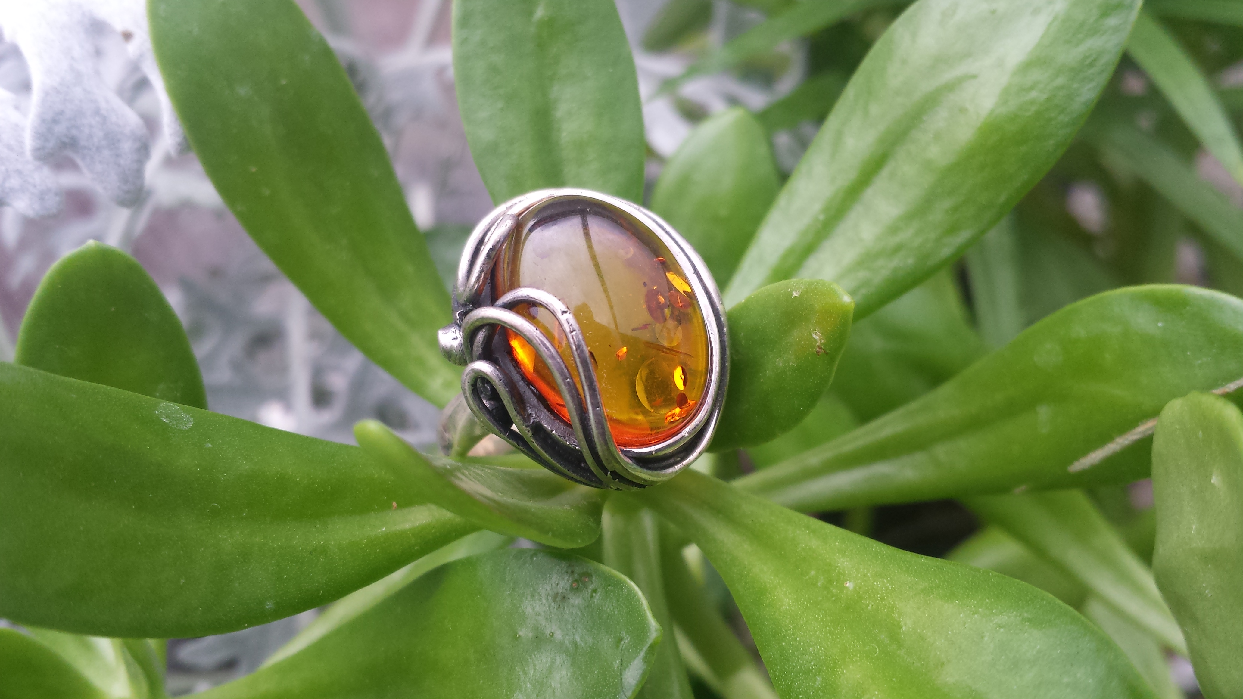 BALTIC HONEY AMBER RING & SOLID 925 STERLING SILVER 10 G