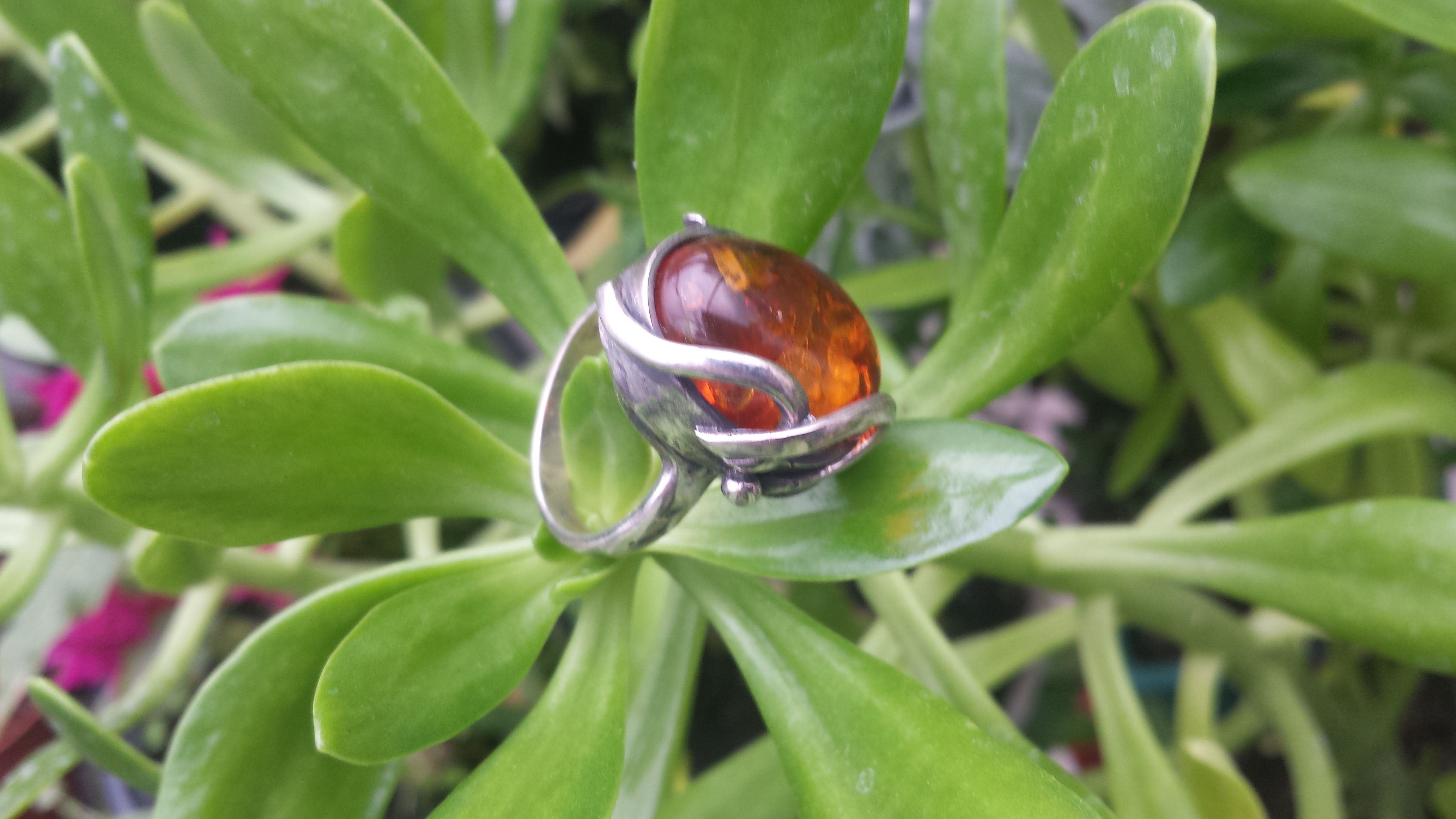 HONEY AMBER RING & SOLID 925 STERLING SILVER 10G.
